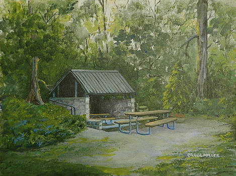 Oak Openings Shelterhouse by Carol L Miller