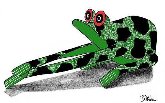 Oaxacan Frog by Barbara Drake