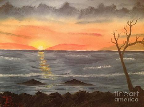 Ocean at Sunset by Tim Blankenship