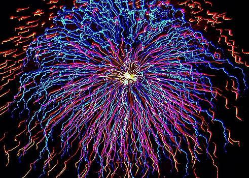 Ocean City Fireworks by Lisa Merman Bender