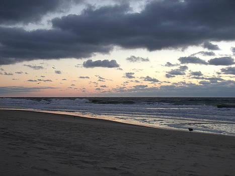 Ocean City Sunrise by Terrilee Walton-Smith