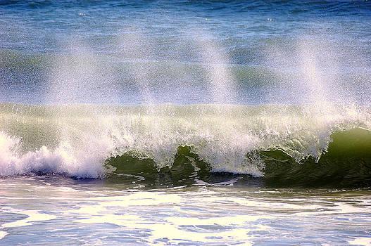 Ocean Spray by Rebecca West