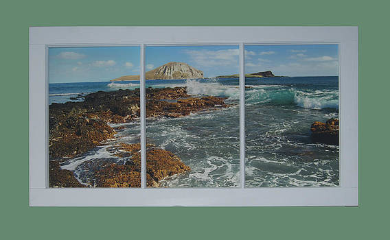 Michael Peychich - Ocean View Reclaimed Window