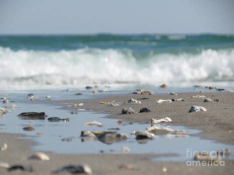 Ocean WaterScape by Crissy Anderson