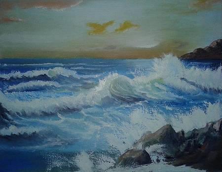 Ocean Wave by Anwar Sohel