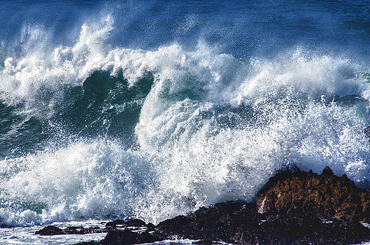 Ocean Wave  first place winner by Heide Stover