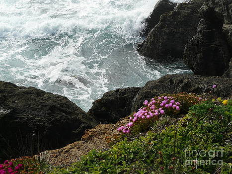 Ocean Wildflowers-2 by Avis  Noelle