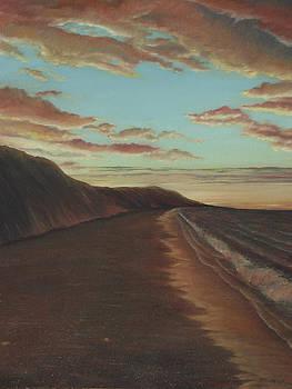 OceanSide Sunset by Jennifer  Creech