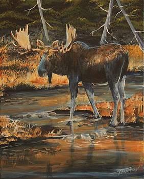 October Bull by Scott Thompson
