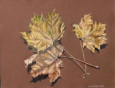 Gina Gahagan - October Leaves