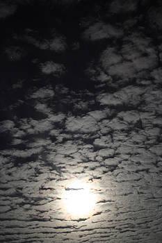 October Moon by Joel Loftus