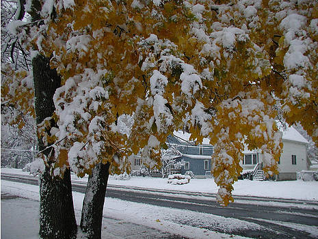 October Snow by Ken Branch