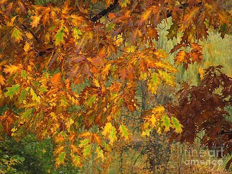 October Watercolors_1 by Halyna  Yarova