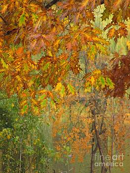October Watercolors_2 by Halyna  Yarova