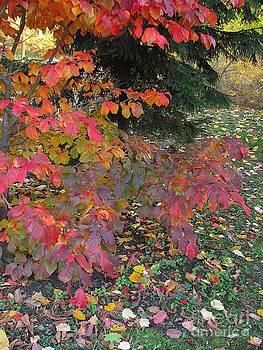 October Watercolors_3 by Halyna  Yarova