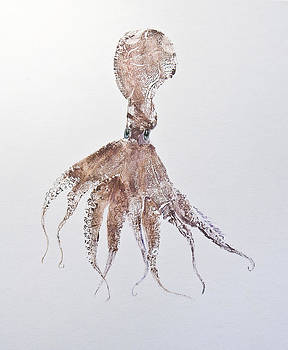 Octopus by Nancy Gorr