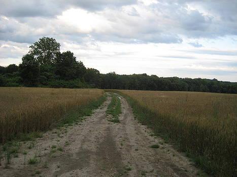 Off the Beaten Path by Amanda Edwards