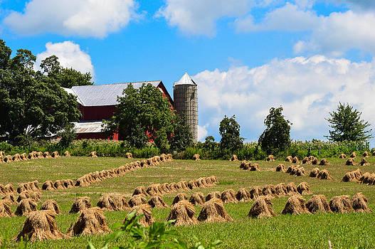 Ohio Farm by Jim Wilcox