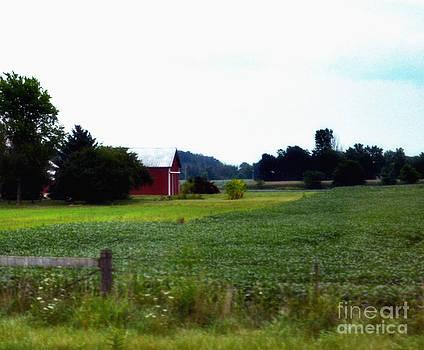 Ohio Farmland by Eva Thomas