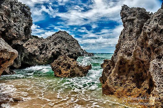 Christopher Holmes - Okinawa Coast