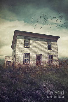 Sandra Cunningham - Old abandoned house on the hill