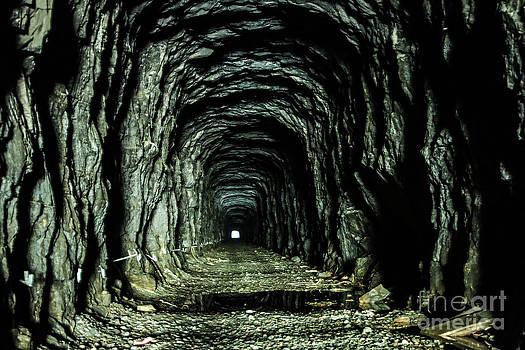 Old abandoned train tunnel by Markus Hovikoski