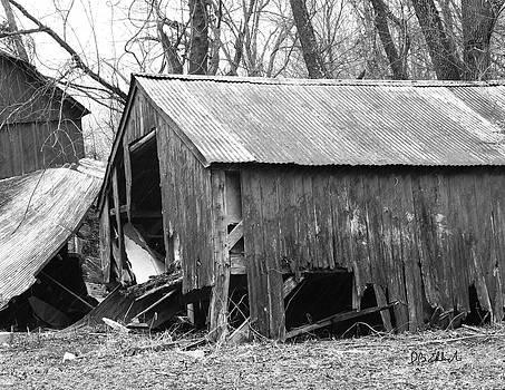 Old Barn by IB Ehrlich