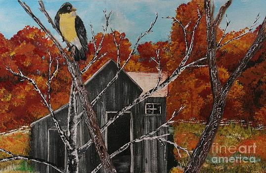 Old Barn In Fall by Donna Jeanne  Carver