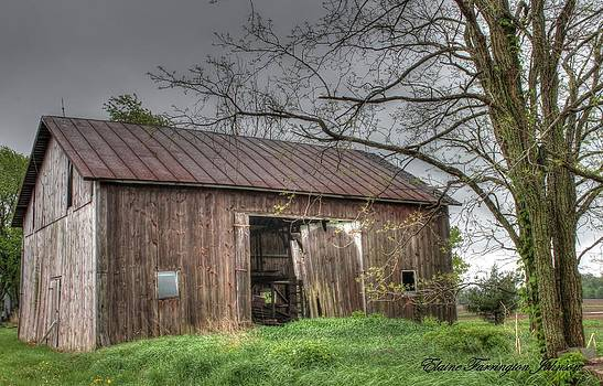 Old Barn in Morrow County by Elaine Farrington Johnson