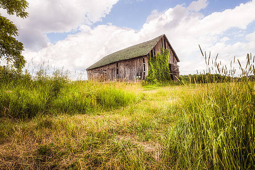 Old Barn in Ontario County - New York State by Gary Heller