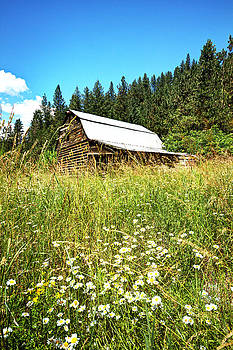 Old Barn by Rick Otto