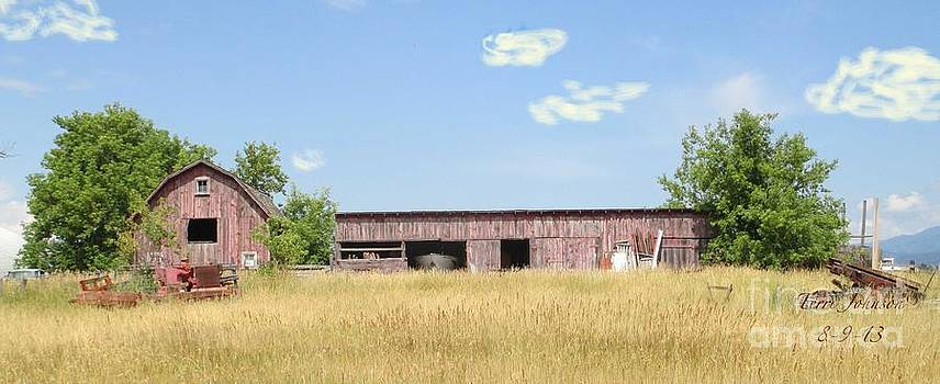 Old Barn by Terri Johnson
