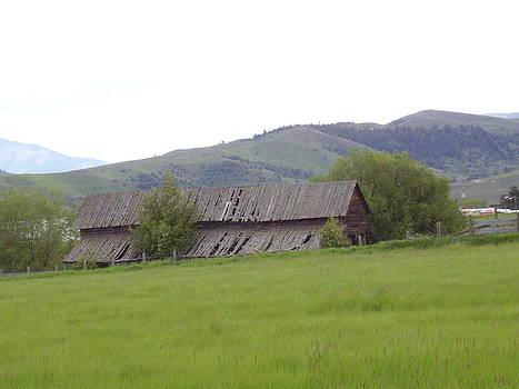 Old Barn by Yvette Pichette