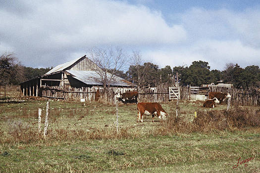 Old Bill Jones Barnyard by Charles Fennen