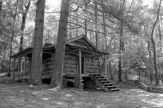 Old Cabin  by Bob Jackson