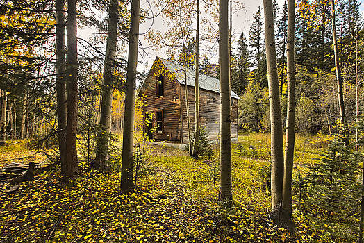 James Steele - Old Cabin in Iron Town Colorado