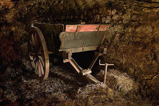 Liz  Alderdice - Old Cart