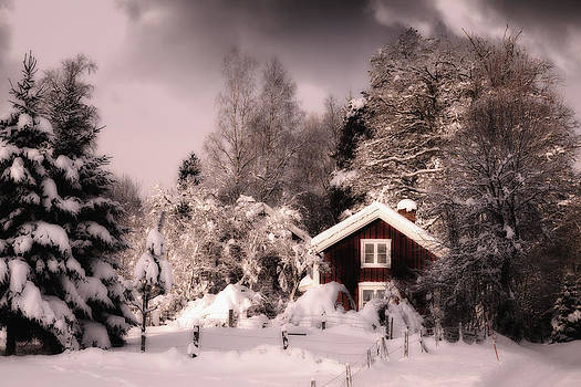 Old Cottage Surrounded By Snowy Winter Landscape by Christian Lagereek