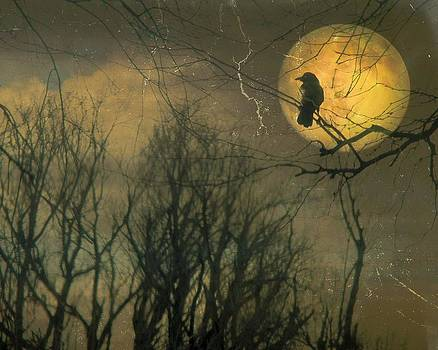 Gothicolors Donna Snyder - Old Crow And Autumn Moon