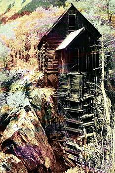 Old Crystal Mill Crystal Colorado by Paula Ayers