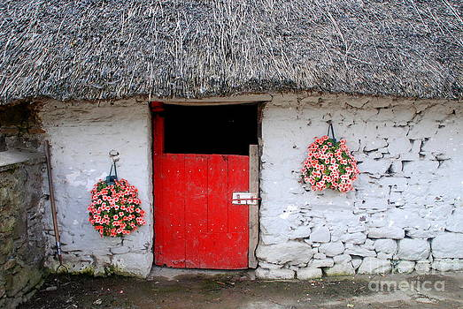 Joe Cashin - Old farm buildings