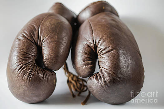 Patricia Hofmeester - Old fashioned boxing gloves