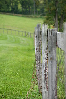 Old Fence by Heidi Poulin