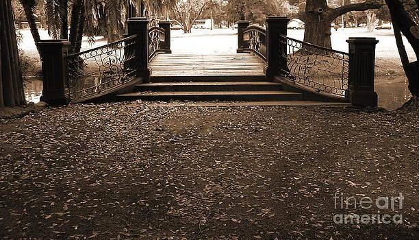 Old film Bridge by Gonzalo Teran