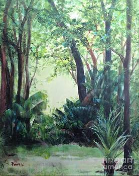 Old Florida 5 by Mary Lynne Powers