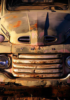 Old Ford Warrior by Martin Sullivan