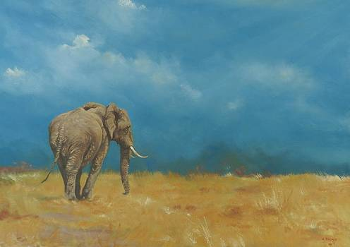 Old Friend by Robert Teeling