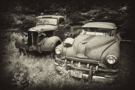 Old Friends by Rebecca Skinner