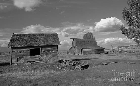 Old Homestead by Kathleen Struckle