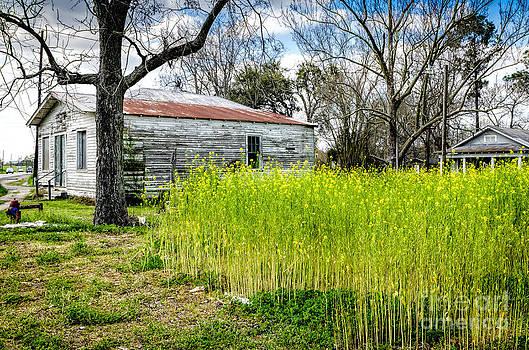 Kathleen K Parker - Old Houses Along River Road